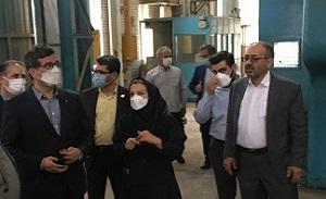 برند تاریخی کارخانجات تولیدی تهران احیا میشود