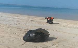 تداوم پاکسازی سواحل نایبند توسط پتروشیمی جم